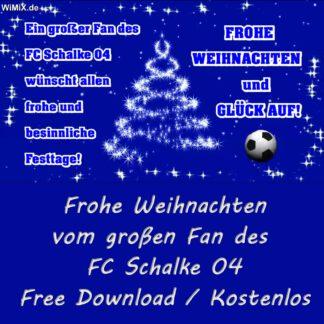 Frohe Weihnachten, FC Schalke 04, S04, 1904, Gelsenkirchen, Glück Auf, Knappenschmiede, U19, U23, Arena, Stadion, Blau, Weiß